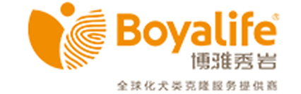 Boyalife Sooam logo